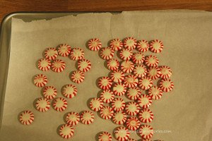 Unwrapped Peppermints