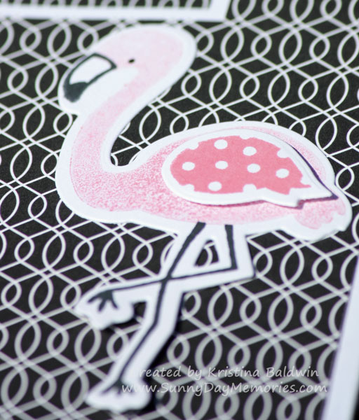 Closeup Tickled Pink Flamingo