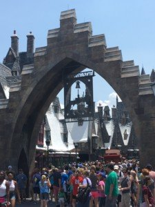 Crowded Harry Potter World