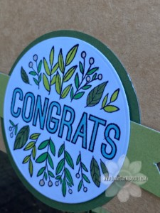 Angled View of Congrats Double Dutch Fold Card