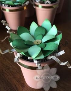 Cricut Flower Market Paper Succulent