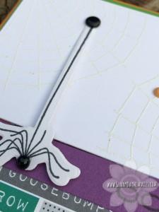 Closeup Cats & Bats Halloween Card