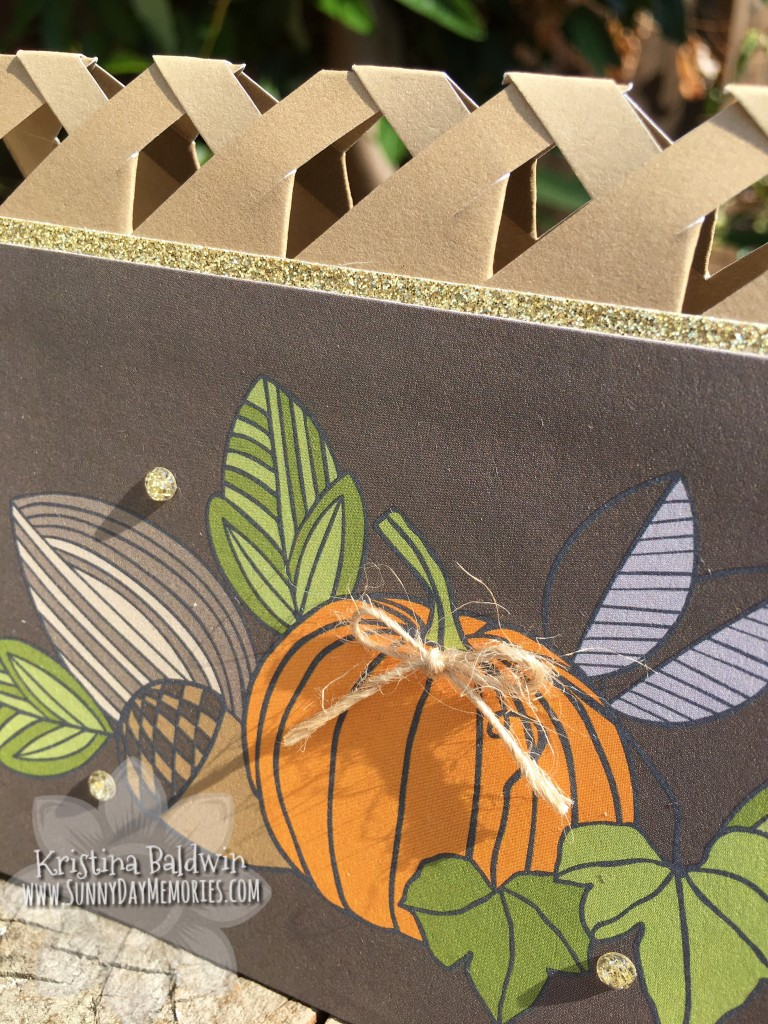 Closeup Pumpkin Lattice Card