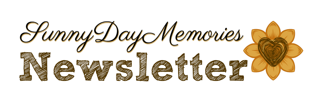 SDM Newsletter Logo