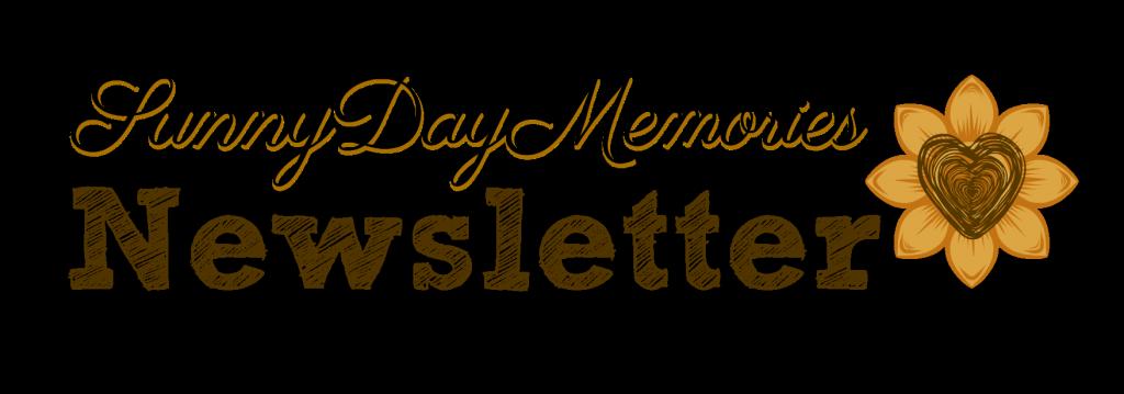 SDM Newsletter Logo