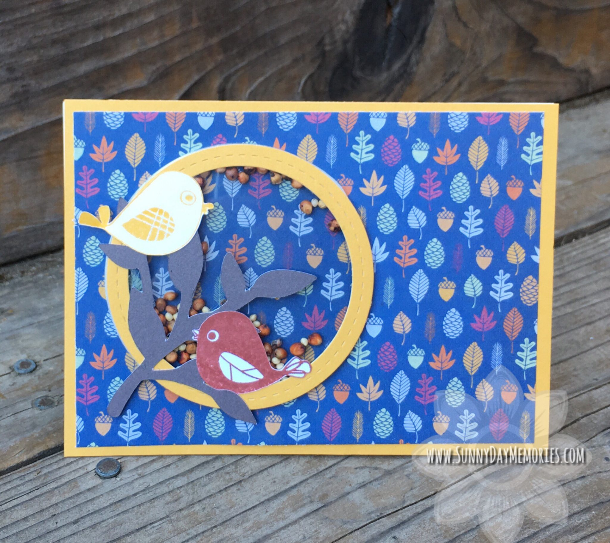 CTMH Little Birdie Shaker Card
