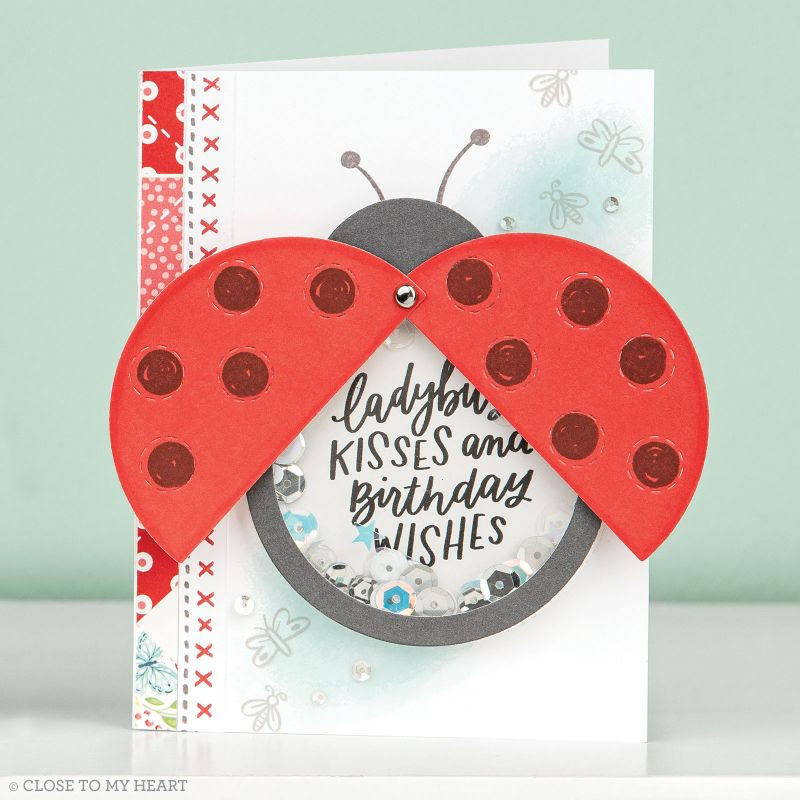 Close To My Heart Ladybug Shaker Window Thin Cuts