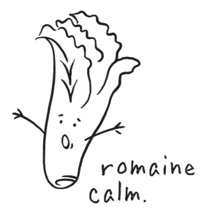 CTMH Romaine Calm Stamp Set