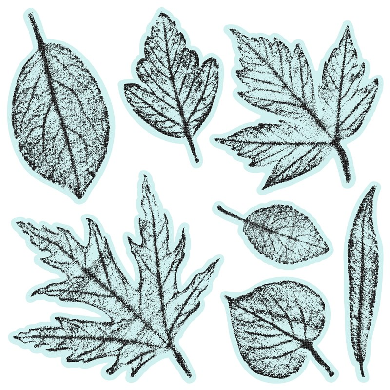 CTMH Textured Leaves Stamp Set
